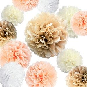 Party Tissue Paper Pom Poms Set